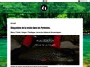 screenshot http://www.guidepechepyrenees.com Blog sur la pêche de la truite dans les Pyrénées