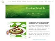 screenshot http://www.habitat-subtil.fr/ géobiologie de l'habitat
