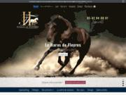 Cours de cheval près de Toulouse