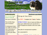 screenshot http://www.hautesprairies.com éleveur de chien terre-neuve