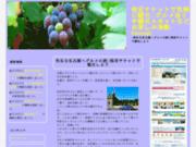 screenshot http://www.hawapi.com hawapi.com