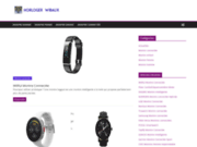 screenshot http://www.horlogerwibaux.fr horloger wibaux