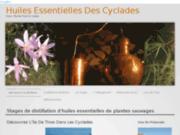screenshot http://huilesessentiellesdescyclades.fr/ Stages de distillation d'huiles essentielles de plantes sauvages.