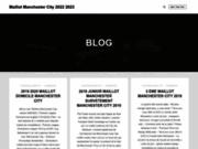 screenshot http://www.imagimmo-gignac.com/ agence immobilière à gignac 34 – imagimmo gignac