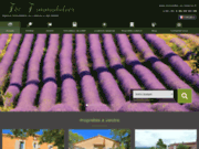 screenshot http://www.immobilier-en-luberon.fr immobilier luberon provence