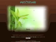 screenshot http://www.institut-beaute-perinitude.com massages et soins ayuvédique à rives