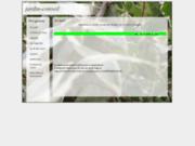 screenshot http://jardin-conseil.onlc.fr conseil pour cultiver un jardin potager