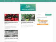 screenshot http://www.jardins-dallages.fr jardins et dallages, le site éditorial de carré d'arc