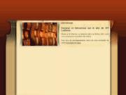 screenshot http://www.jpf-lutherie.com/ atelier de lutherie jpf lutherie