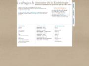 screenshot http://kinesiologie.lespages.fr annuaire des kinésiologues