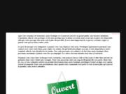 screenshot http://www.kittoner.fr kittoner - spécialiste de la recharge toner