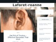 screenshot http://www.laforet-roanne.com immobilier roanne