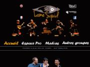 Lame Squid - Groupe de musique Irlandaise