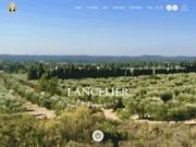 Lancelier en Provence : Huile d'olive AOP de la Vallée des Baux de Provence