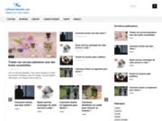 screenshot http://www.laplumeculturelle.com webzine culturel 100 lorrain