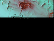 screenshot http://www.laure-o.com laure olibère - artiste peintre