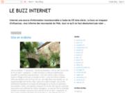 LE BUZZ INTERNET
