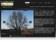 Elagage, Abattage d'arbres et Débrousaillement