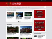 screenshot http://lebaliblog.com voyage à Bali