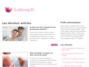 screenshot http://www.leboog.fr Restaurant à Vienne