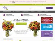 LeFleuriste.com  Montreal