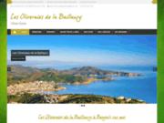 screenshot https://les-oliveraies-de-la-baillaury.com Les Oliveraies de la Baillaury