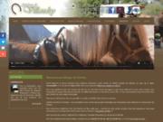 Randonnée à cheval à Villandry (Indre-et-Loire 37) - Attelages de Villandry