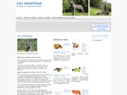 screenshot http://www.lescanailloux.com les canailloux