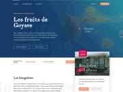 screenshot http://www.lesfruitsdegoyave.fr guadeloupe gîtes  les fruits de goyave