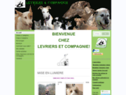 screenshot http://www.levriers-co.fr levriers  compagnie grand ouest
