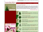 Livraison de sapin de Noël