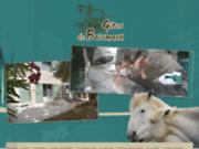 screenshot http://www.location-gites-camargue.com gite rural camargue. gîtes de boismaux