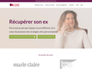 screenshot http://www.love-consulting.fr love-consulting