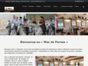 Visite manade en Camargue