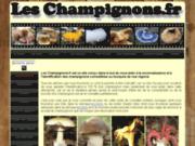 Les champignons:guide du champignon-recettes de champignons