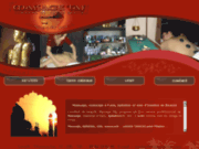 screenshot http://www.massage-taj.com massage paris