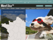 screenshot http://www.meetika.com annonce chat