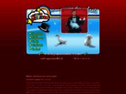 screenshot http://www.melkior.fr magicien pour enfants