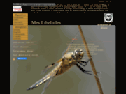 screenshot http://www.meslibellules.fr mes libellules des mauges