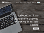 Marketing en ligne pour site web