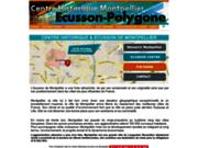 Ecusson de Montpellier