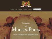 screenshot http://www.moulin-pouzy.com vin monbazillac moulin pouzy