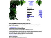 screenshot http://www.mur-vegetal.eu construire un mur végétal
