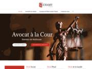 screenshot http://www.nathalie-roze-avocat.com site de maître nathalie roze avocat