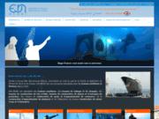 screenshot http://www.negri-france.fr travaux maritimes et fluviaux
