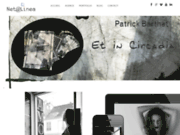 screenshot http://www.netalinea.fr la création et l'animation de sites internet à Lille
