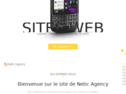 screenshot http://www.netic-agency.fr creation site internet marseille, montpellier