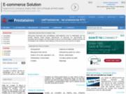 screenshot http://www.netprestataires.com prestataires informatiques