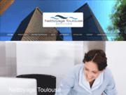 screenshot http://www.nettoyage-toulouse-services.fr Toulouse Nettoyage Services