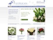 screenshot http://www.pelicanfleurs.com plantes et fleurs haut de gamme